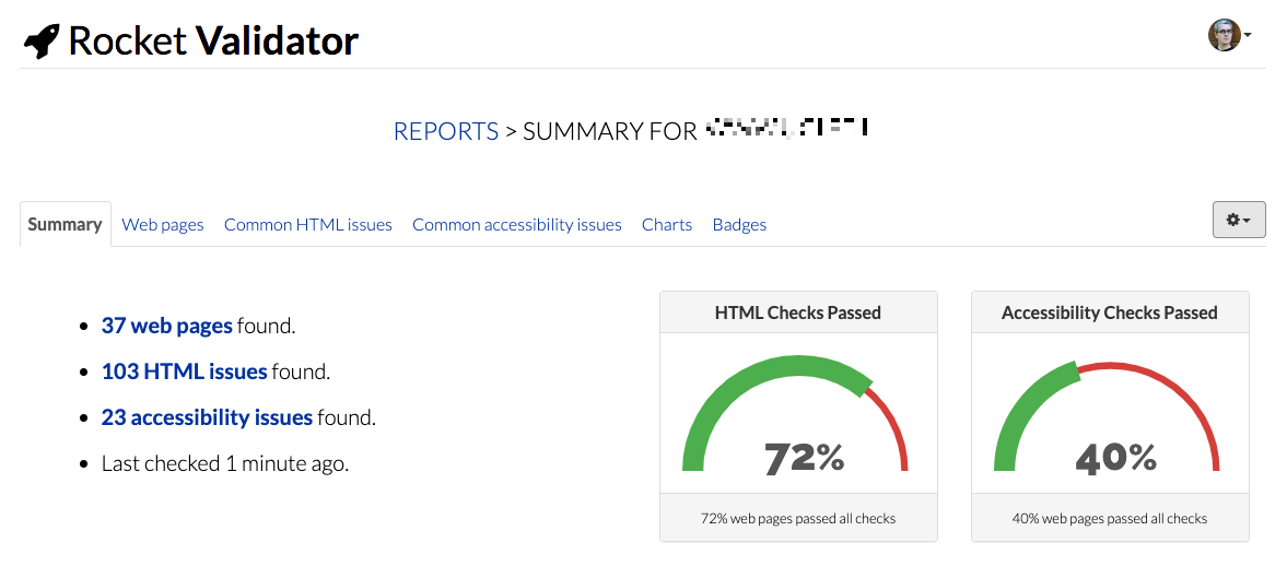 Report Summary screenshot